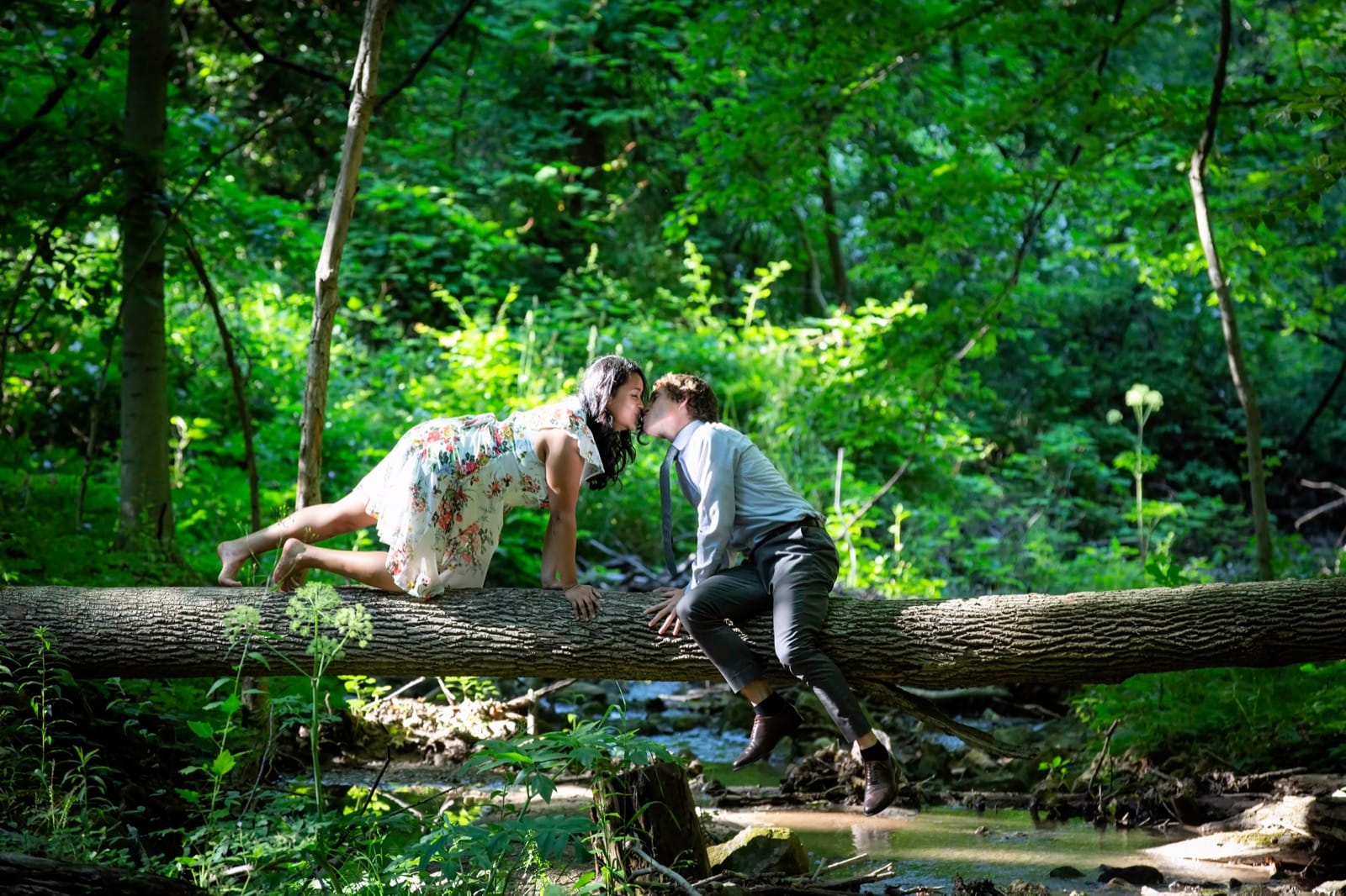 Engagement Pictures at the Dundas Valley Conservation Area